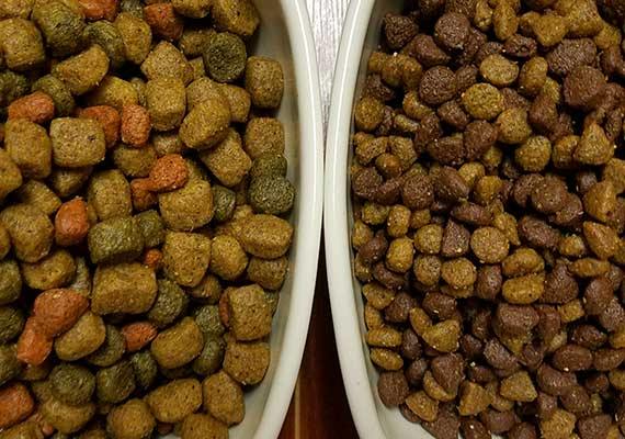 Rachel Ray Nutrish Chicken and Veggies dry kibble used to test slow feed dog bowls