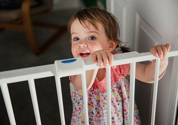 Using a baby gate to keep toddler away from dog bowl
