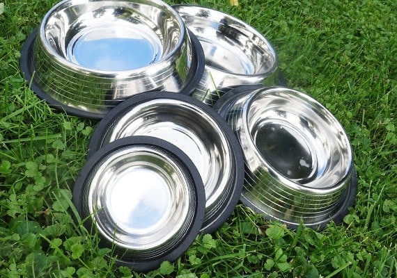 Stainless steel dog bowls with non-slip rubber bases