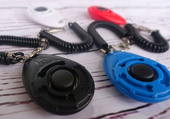 4 dog clickers with wrist straps in red, blue, white and black colors