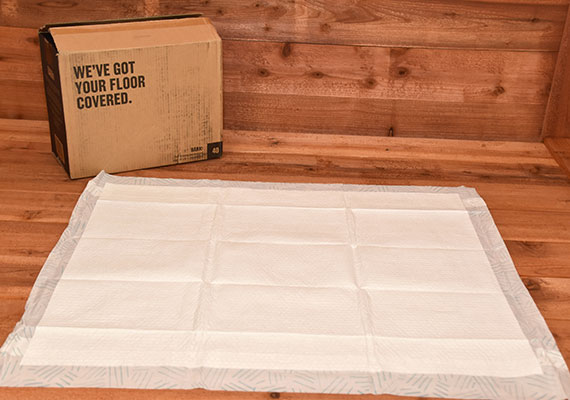 Bark XXL Pee Pad laid flat on ground next to box - winner of best giant pee pads for dogs winner