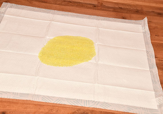 Bark XXL Pee Pads with yellow dog urine absorbed into center of pad - Winner of best giant pee pads for dogs