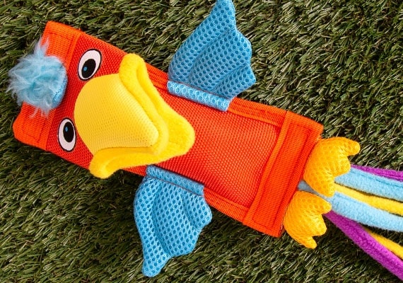 Bird fire hose dog toy with lots of nylon stitching