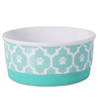 Bone Dry Lattcie Bowl Top Pick Best Ceramic Dog Bowl For Small Dogs