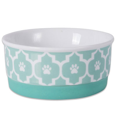 Bone Dry Aqua colored ceramic dog bowl best for small dogs