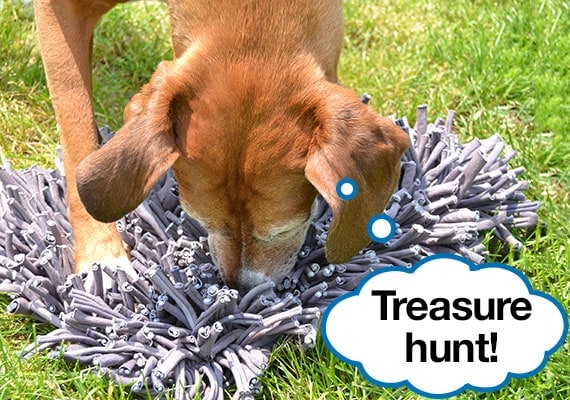 Brown boxer foxhound mix playing with best snuffle mat dog toy, the PAW5 Wooly