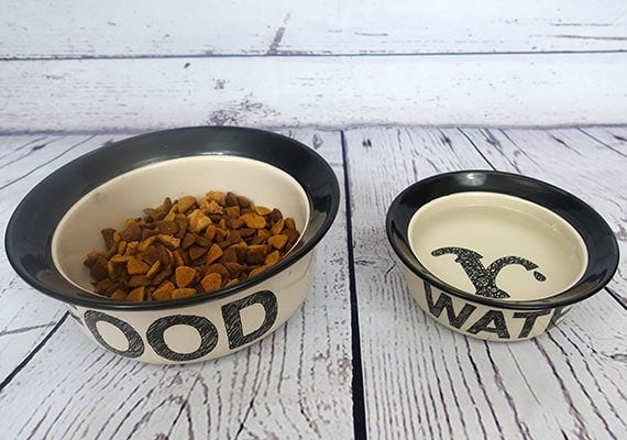 Ceramic dog bowls filled with food and water