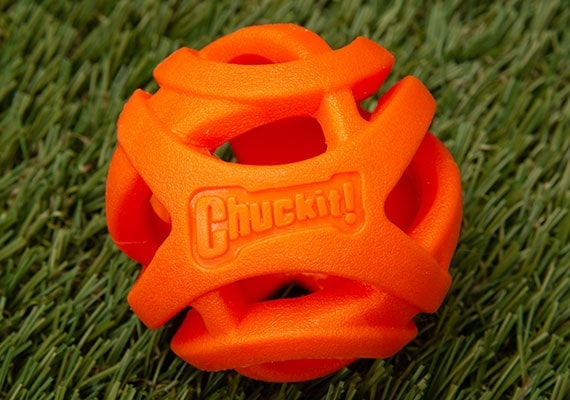 Chuckit! Breathe Right Ball for small, flat-faced dogs
