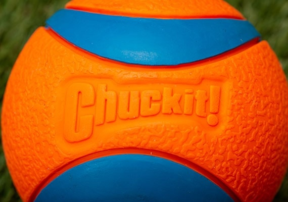 Chuckit! Ultra dog tennis ball close up shot on rubber surface
