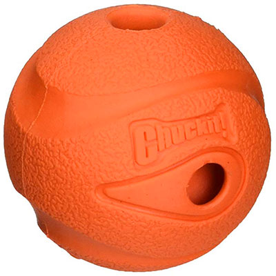 Chuckit! Whistler Ball best whistling dog ball winner
