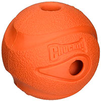 Chuckit Whistler Top Pick Best Whistling Tennis Ball For Dogs