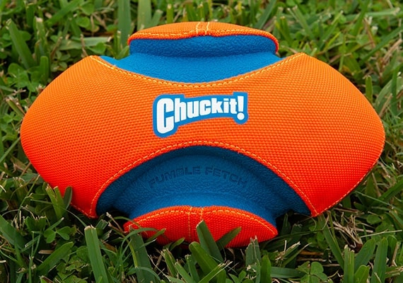 Cuckit Fumble Fetch dog football sitting on grass in park