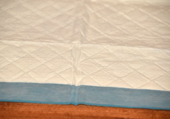 Close up on four paws wee wee pads quilted top layer - winner of best all-round pee pads for dogs