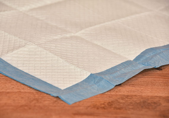 Close up on quilted top layer and corner of Frisco Training and potty pads - winner of best pee pads for dogs