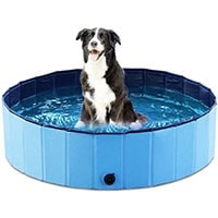 Foldable Dog Pool for hot weather play