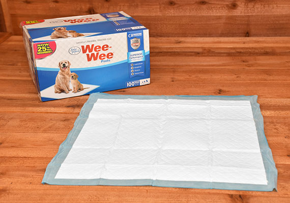 Four Paws Wee-Wee pads - Winner of best all-round pee pad for dogs