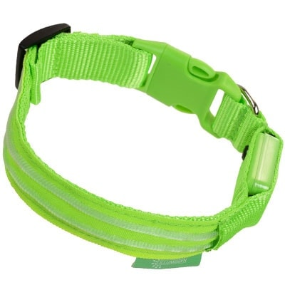 Illumiseen USB Rechargeable LED Dog Collar winner of best budget category