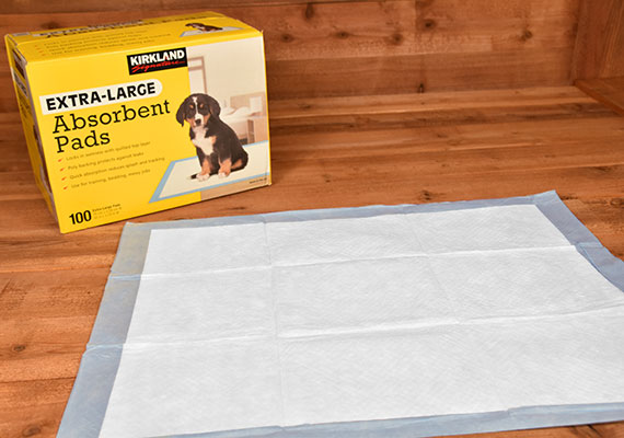 Kirkland Extra Large Absorbent Pads - Winner of best large pee pad for dogs