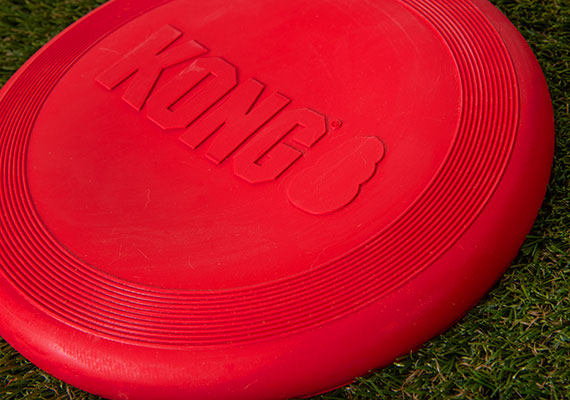 Kong Flyer Red Rubber Frisbee Sitting on grass