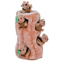 Outward Hound Hide A Squirrel - Best Plush Toy For Huskies