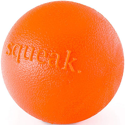Planet Dog Orbee Tuff Squeak best squeaky dog tennis ball