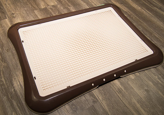 Richell Paw Trax Mesh Training Tray on wooden floor