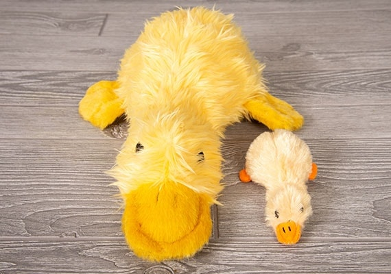 Small and large duckworth duck dog plush toy compared side by side