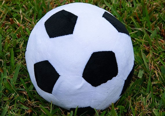 Soccer ball pillow for dogs sitting in grass