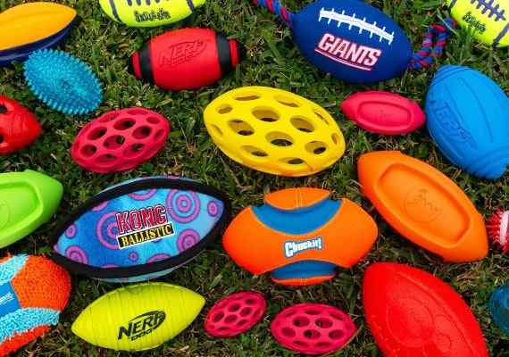 Some of the different dog footballs we tested and reviewed sitting on grass
