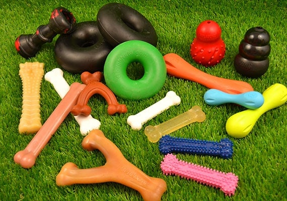 Some of the different heavy duty chew toys we tested and reviewed