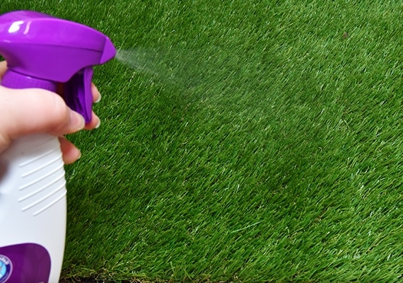 Spraying PoochPad Potty Training Attractant Spray on grass pad