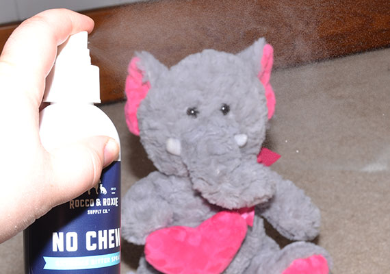 Spraying plush toy with anti-chew spray bottle to stop dog biting it
