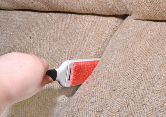 Using Oxo FurLifter furniture brish to remove pet hair in gap between couch cushions