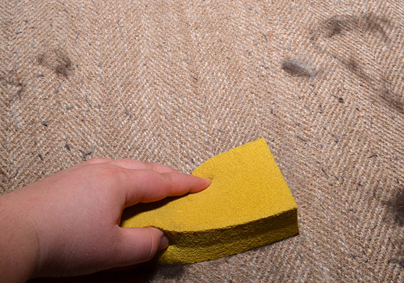 Wiping down seat cushion with gonzo pet hair lifter removing fluffy dog hair