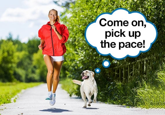 Woman exercising by jogging along footpath as yellow Labrador runs besides her