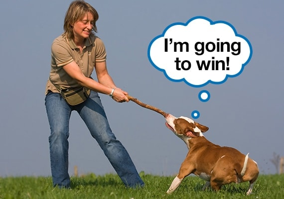 Woman exercising in field by playing tug-of-war with her dog