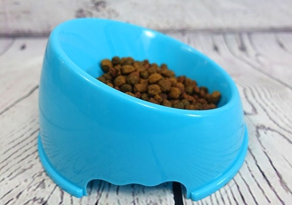 Blue plastic slanted dog bowl for flat-faced breeds