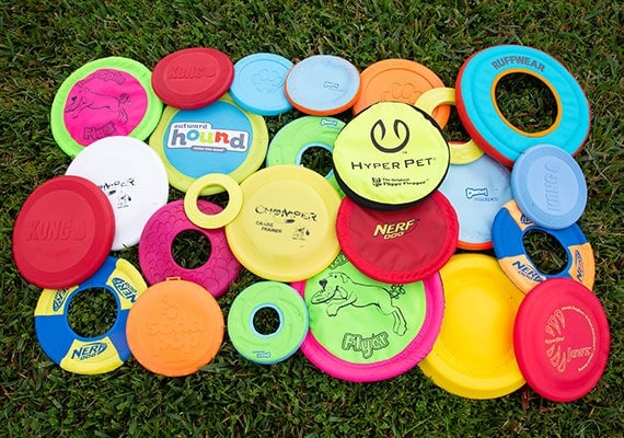 Brand new dog  frisbee discs ready to be tested and reviewed