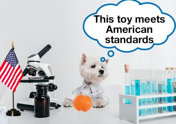Dog in lab coat testing dog toy to American standards