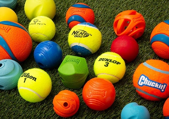 Dog tennis balls waiting to be tested and reviewed to find the best