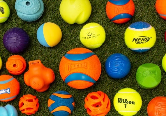 dozens of dog tennis balls we tested and reviewed to find the best dog toy