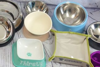 Flat faced dog bowls ready to be tested and reviewed