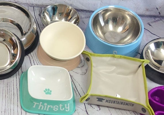 Flat-faced dog bowls ready to be tested and reviewed