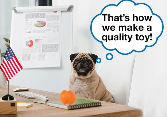 Pug dog sitting at office desk presenting how to make a quality dog toy