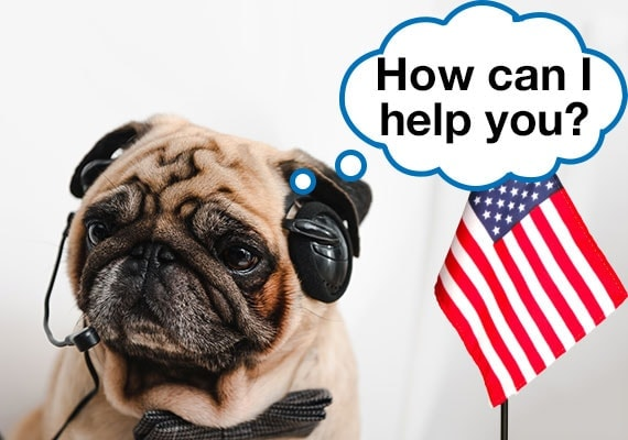 Pug dog with phone headset next to American flag